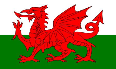 Drapeau du Pays de Galles: divisé en deux bandes, blanche en haut et verte en bas, et frappé d'un dragon rouge vu de profil, tête vers la gauche